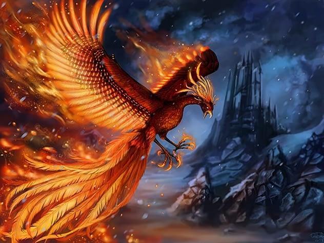 Chiêm bao mơ thấy chim phượng hoàng có ý nghĩa gì to lớn ?