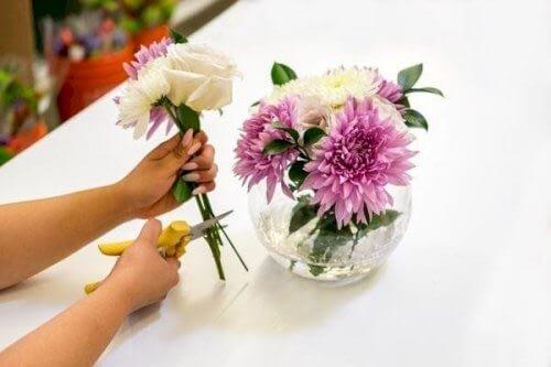 Nằm mơ thấy mình cắm hoa có ý nghĩa gì?