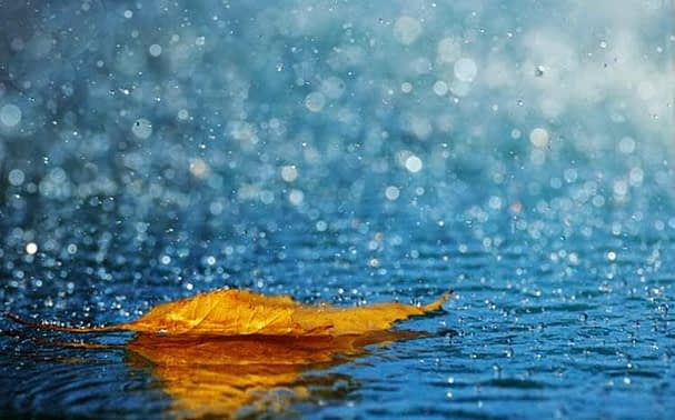 Giấc mơ thấy mưa báo hiệu điều gì?