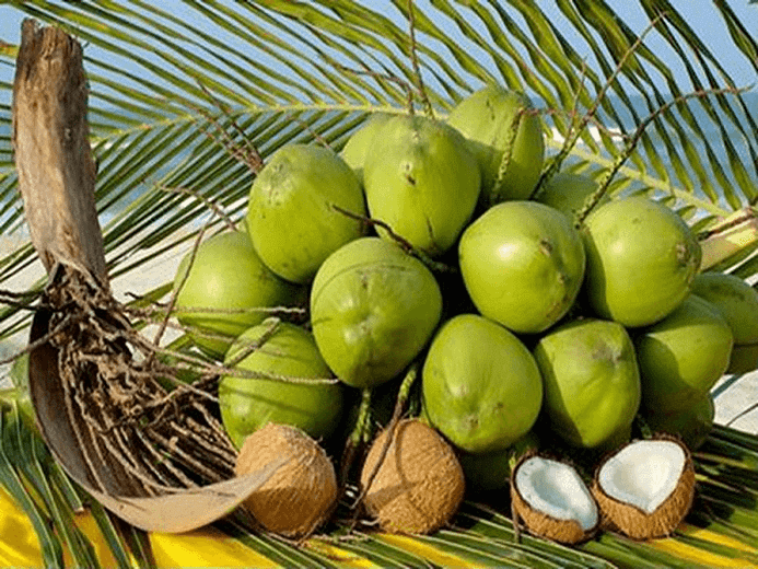 Mộng mơ thấy cây dừa điềm báo may hay rủi